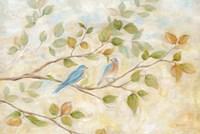 Blue Birds Branch Fine Art Print
