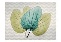 "Citrus Orchid Tree by Albert Koetsier - 19"" x 13"""