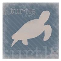 Turtle Definition Fine Art Print