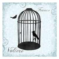 """Birdcage 2 by Lauren Gibbons - 13"""" x 13"""""""