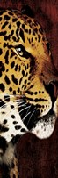"Leopard Panel by Jace Grey - 6"" x 18"", FulcrumGallery.com brand"
