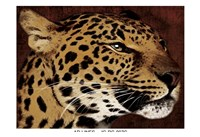 "Leopard 1 by Jace Grey - 19"" x 13"""