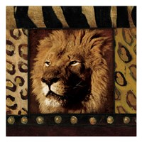 Lion with Wild Border Framed Print