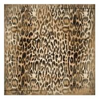 "Leopard Print by Jace Grey - 13"" x 13"""