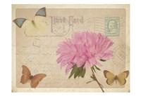 Vintage Butterfly Postcard III Fine Art Print