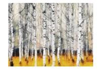 "Saffron Timber by Taylor Greene - 19"" x 13"""