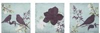 Floral Bird Triptych Fine Art Print