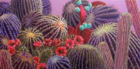 Barrel Cactus 1 by Sharon Weiser - various sizes