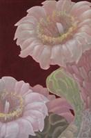 Saguaro White Fine Art Print