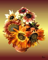 Sunflower 7 Fine Art Print