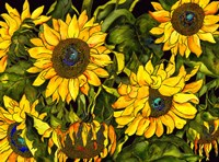 Sunflowers On a Field of Green Fine Art Print