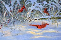 Cardinals and Berries Fine Art Print