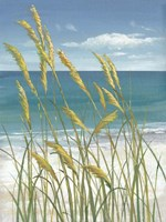 Summer Breeze I Framed Print