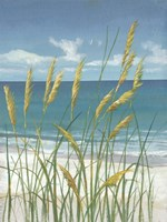 Summer Breeze II Fine Art Print