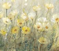 Summer in Bloom II Framed Print