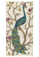 "Peacock Fresco I by June Erica Vess - 13"" x 19"""
