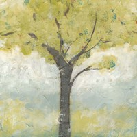Spring Arbor I by June Erica Vess - various sizes