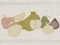 Contour Fruits & Veggies I Framed Print