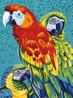 Birds in Paradise III by Carolee Vitaletti - various sizes