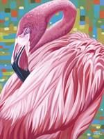 Fabulous Flamingos II by Carolee Vitaletti - various sizes