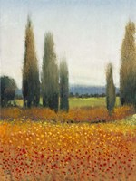 Cypress Trees II by Timothy O'Toole - various sizes