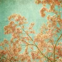 Fleurish II Fine Art Print