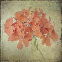 Lush Vintage Florals IX Fine Art Print