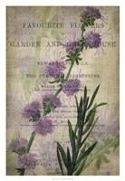 """Favorite Flowers I by John Butler - 22"""" x 32"""""""
