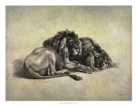 "Big Cats IV by John Butler - 26"" x 20"""