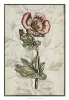 "Keepsake Floral I by Jennifer Goldberger - 18"" x 26"""