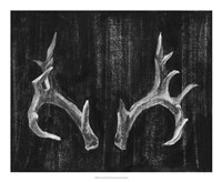 """Rustic Antlers I by Ethan Harper - 22"""" x 18"""""""