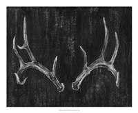 "Rustic Antlers II by Ethan Harper - 22"" x 18"""