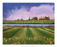 Idyllic Farm II Framed Print