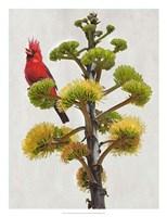 "Avian Tropics I by Chris Vest - 20"" x 26"" - $37.49"