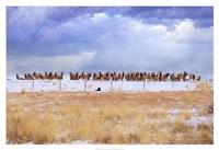 "Zippy & the Elk by Chris Vest - 38"" x 26"", FulcrumGallery.com brand"
