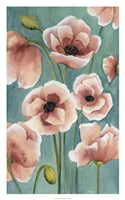 Freckled Poppies II Framed Print