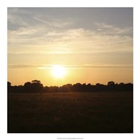 Sunset Field I Fine Art Print