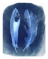 "Feather Negatives I by Grace Popp - 18"" x 22"""