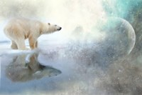 Polar King Fine Art Print