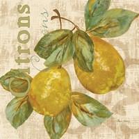 Rustic Fruit III Fine Art Print