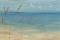 Seagrass Seagulls Fine Art Print