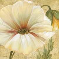 Primavera III by Pamela Gladding - various sizes