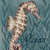 Nautical Critters I Framed Print