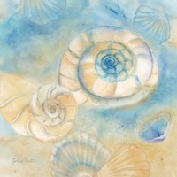 Watercolor Shells I by Cynthia Coulter - various sizes