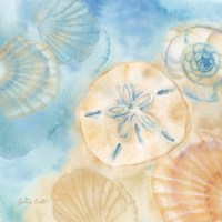 Watercolor Shells III Fine Art Print