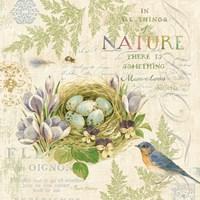 Nature Trail I Fine Art Print