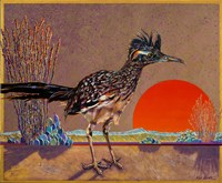Roadrunner in the Evening Fine Art Print