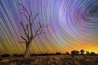 Hilltop Startrail by Lincoln Harrison - various sizes