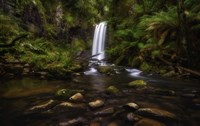Waterfall by Lincoln Harrison - various sizes