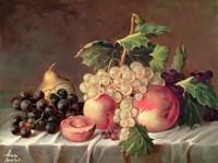 Fruit by Shiva - various sizes